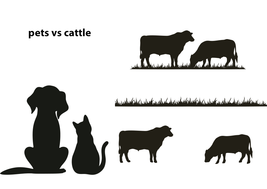 pets versus cattle